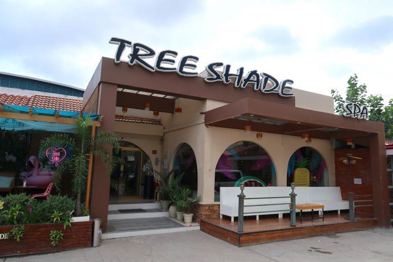 セブ島のツリーシェイド